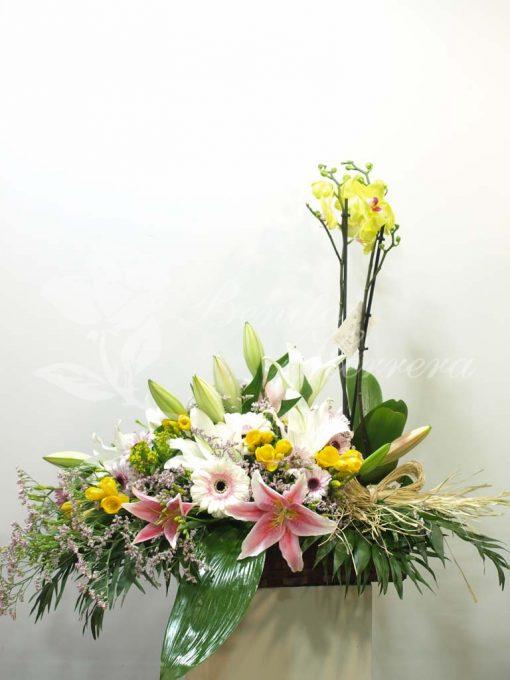 Cesta de flor y planta 3