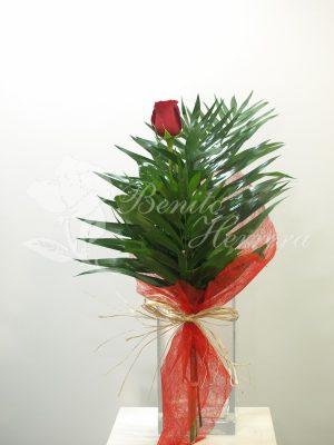 Rosa individual 4