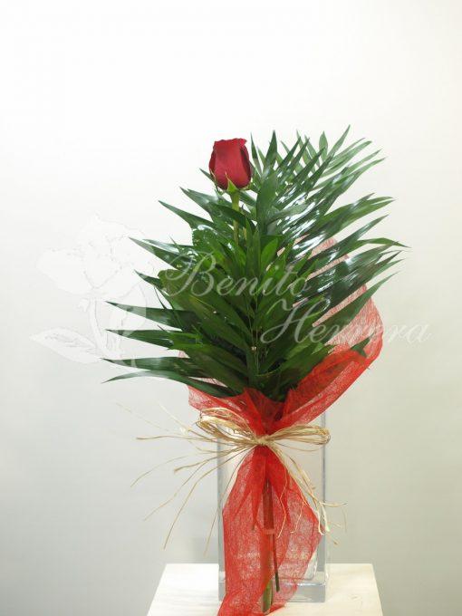 Rosa individual 3