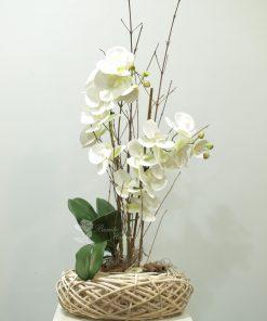 Phalaenopsis blanca de tela 5