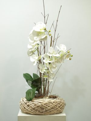 Phalaenopsis blanca de tela 6
