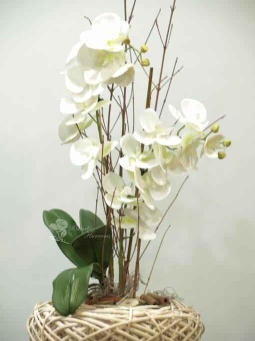 Phalaenopsis blanca de tela 3