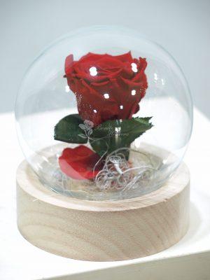 Cúpula bola de cristal Rosa eterna 4