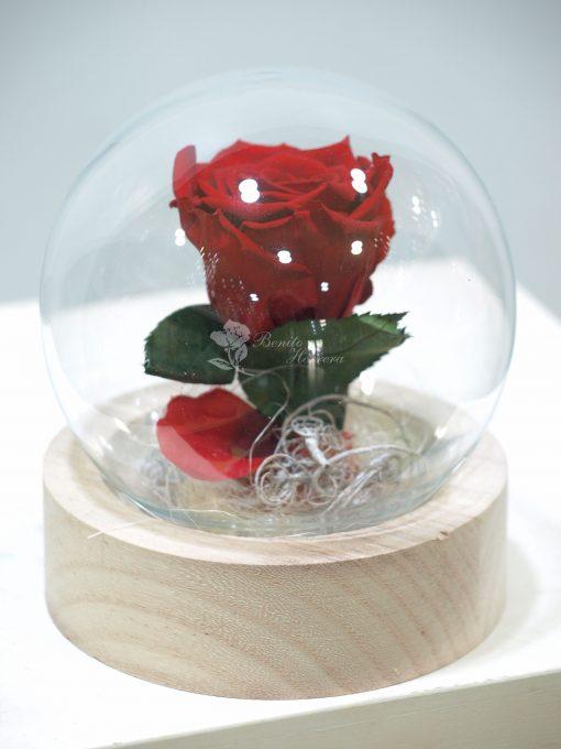 Cúpula bola de cristal Rosa eterna 3